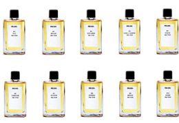 Prada perfumes collection